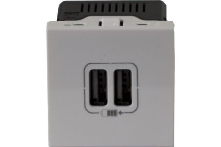 Chargeur 2 usb 45X45 legrand universel