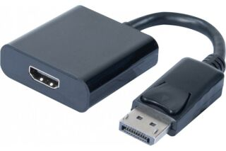 Convertisseur DisplayPort vers HDMI 20CM