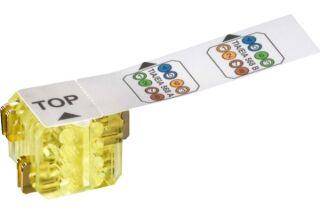 LEONI KERPEN MegaLine Connect45 Cable Plug Monobrin (lot de 25)