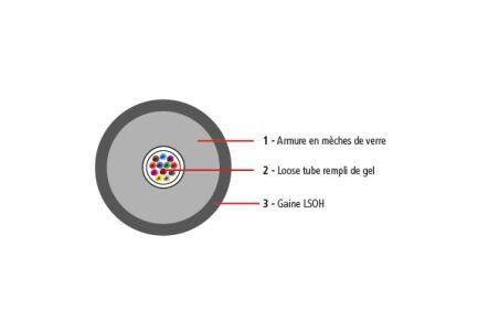 Câble optique universel 12 fibres monomode 9/125 LSOH CPR Dc