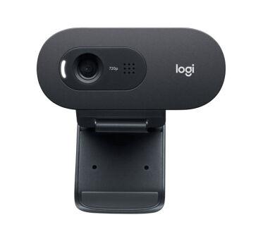 Logitech C505e - Webcam - couleur - 720p - Focale fixe - audio - USB